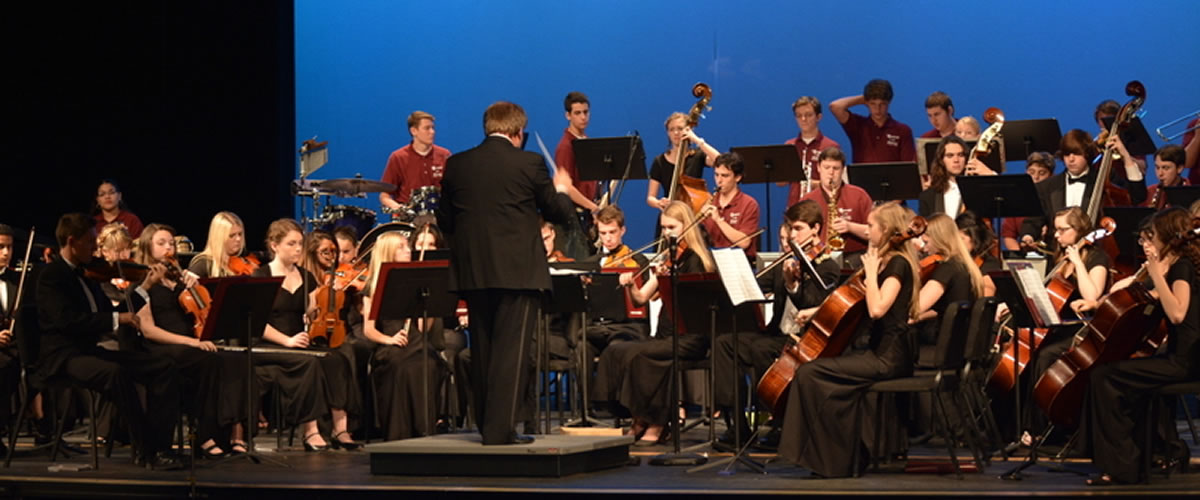 The Riverview High School Orchestra